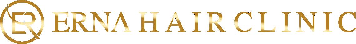 [Image: erna-logo.png]